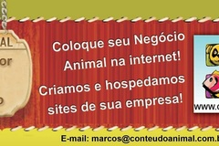 Advertisement: Fazemos e hospedamos websites